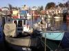 Niendorfer Hafentage